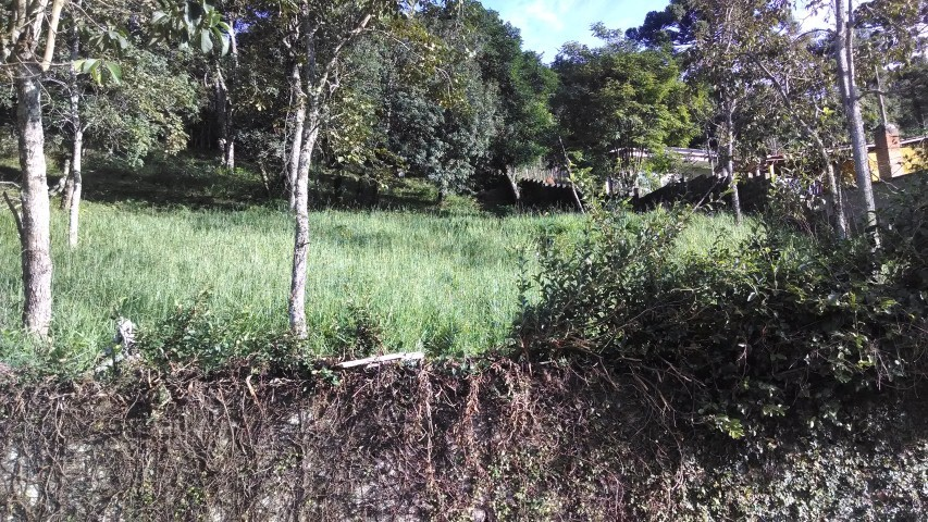 LOTE-VENDA-SANTO ANTONIO DO PINHAL - SP